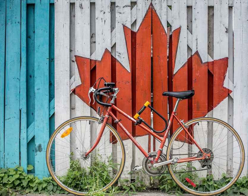 Read maple leaf painted on the wooden fence.